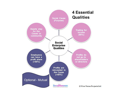 diagram of social enterprise qualities